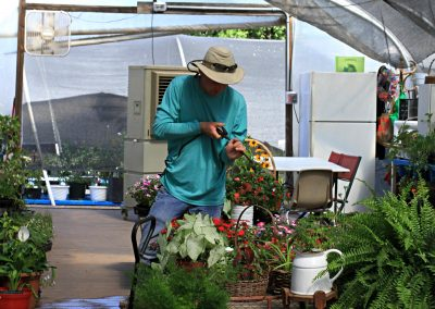 volunteer watering plants